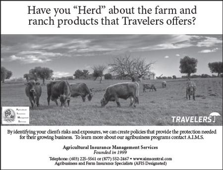 ad-travelers4
